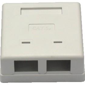 CAT5 Wall Box – Dual RJ45